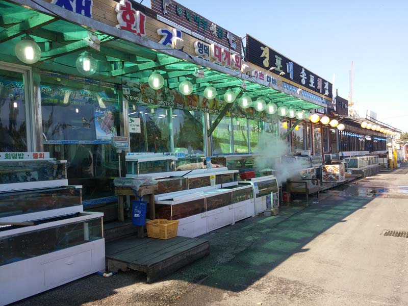 Gangneung Boardwalk Seafood
