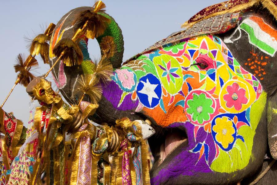 Elephane-Festival-India