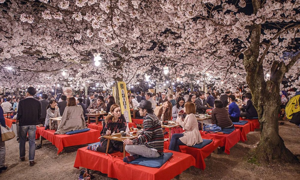 best places to visit in april kyoto
