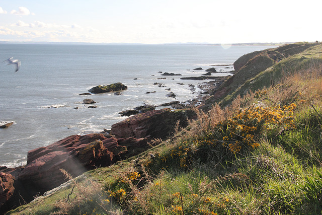 angus scotland best places to travel in july