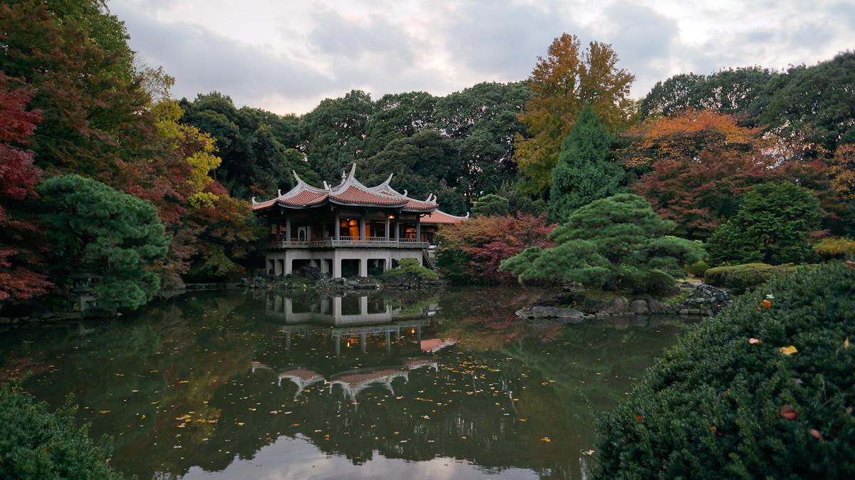 shinjuku national gardens tokyo travel