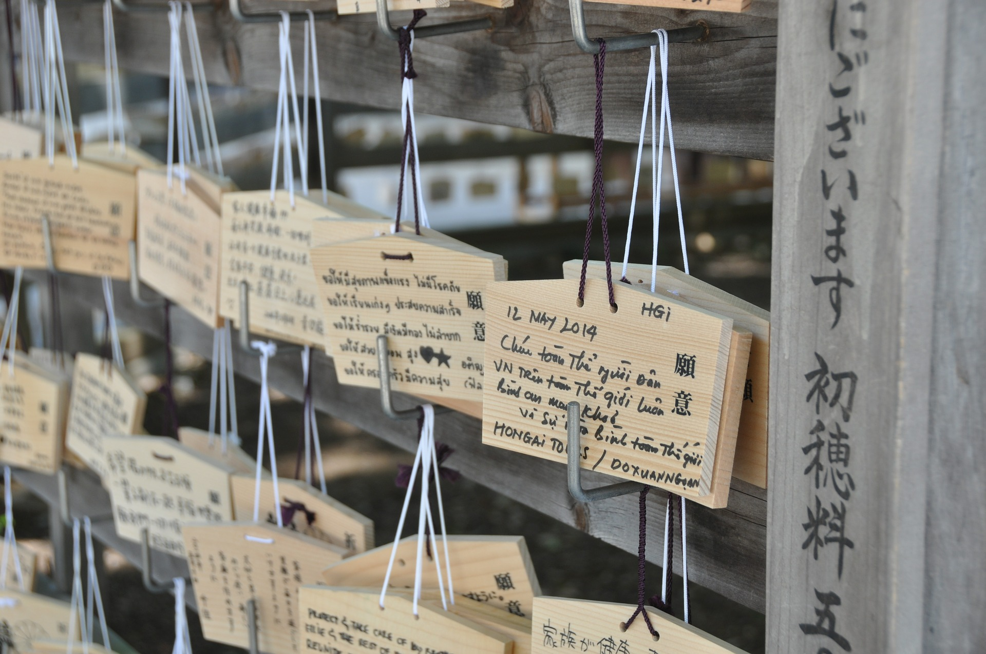 Tokyo travel meiji jingu